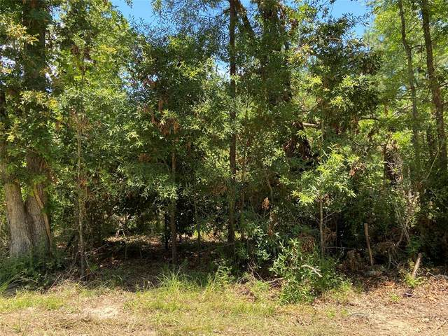 LOT 5 11th Street, Onalaska, TX 77360 (MLS #56880305) :: Christy Buck Team