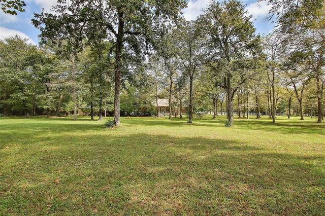 24533 Pine Creek Road, Hockley, TX 77447 (MLS #56888564) :: Guevara Backman