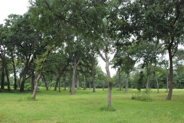 910 Falling Leaf, Friendswood, TX 77546 (MLS #5689416) :: Magnolia Realty