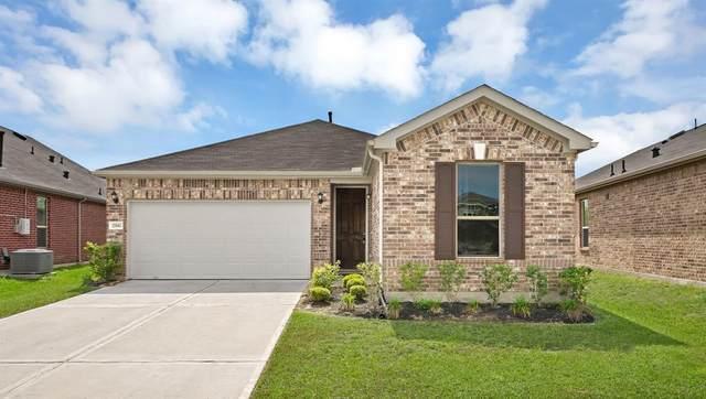 25582 Ramsey Heights Way, Porter, TX 77365 (MLS #5689874) :: Ellison Real Estate Team