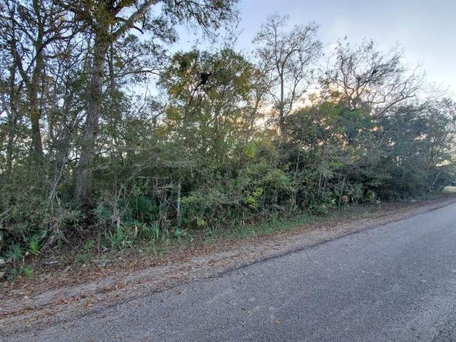 0 N County Road 707, Brazoria, TX 77422 (MLS #5692741) :: Connell Team with Better Homes and Gardens, Gary Greene