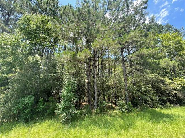 000 County Road 4675, Fred, TX 77616 (MLS #56964609) :: Christy Buck Team