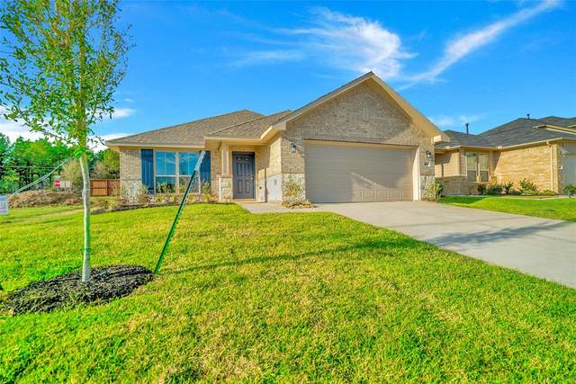 486 Terra Vista Circle, Montgomery, TX 77356 (MLS #57037519) :: The Queen Team