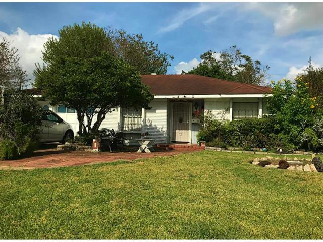 11806 Triola Lane, Houston, TX 77072 (MLS #57049896) :: Glenn Allen Properties