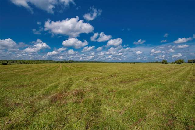 Tract 13 County Road 2285, Tarkington, TX 77327 (MLS #57051630) :: The Freund Group