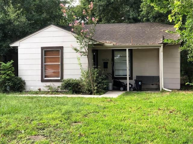6626 Rolla Street, Houston, TX 77055 (MLS #57054369) :: The Freund Group