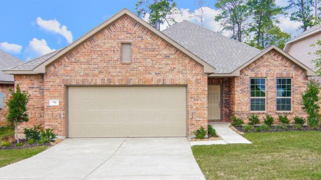 711 Red Elm Lane, Conroe, TX 77304 (MLS #57074727) :: Christy Buck Team