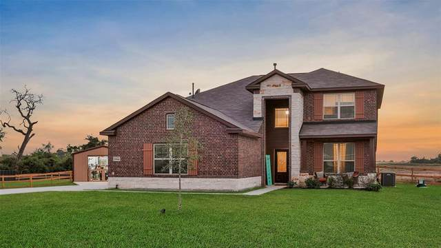 29541 Seatrout Drive, Hockley, TX 77447 (MLS #57112891) :: Christy Buck Team