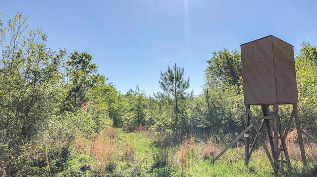 00 Gates Road, Devers, TX 77538 (MLS #57140420) :: The Property Guys
