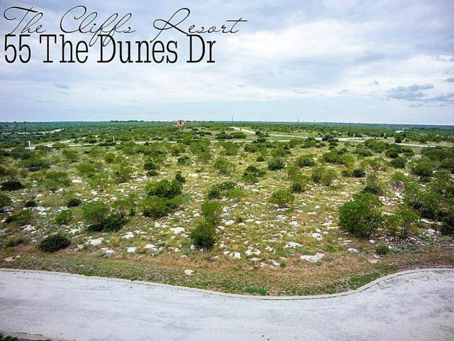 55 The Dunes Drive, GRAFORD, TX 76449 (MLS #57223135) :: The SOLD by George Team