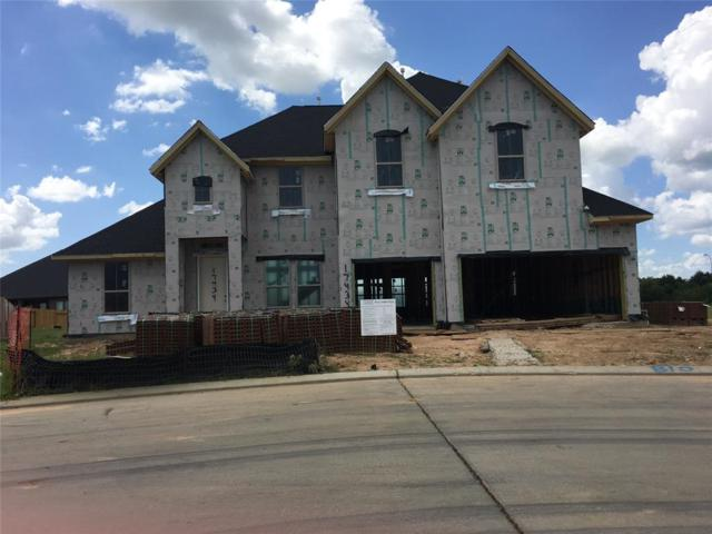 17434 Farm Garden Lane, Hockley, TX 77447 (MLS #57247003) :: The Heyl Group at Keller Williams