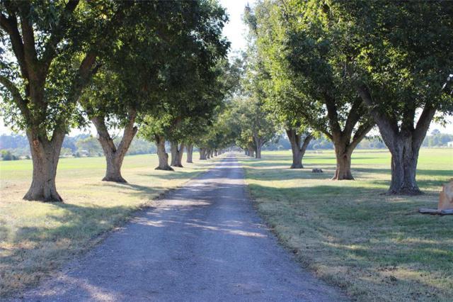 19402 Bauer Road, Hockley, TX 77447 (MLS #57267352) :: Texas Home Shop Realty