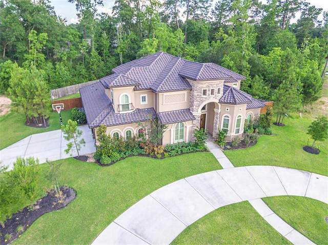 23710 Thortons Park Lane, Spring, TX 77389 (MLS #57292516) :: The SOLD by George Team