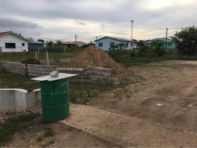 1 Canada Hill Mega Project Belmopan Belize, Houston, TX 00000 (MLS #57321397) :: Michele Harmon Team