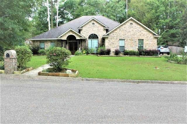 819 Hickory Lane, Jasper, TX 75951 (MLS #57332292) :: Ellison Real Estate Team