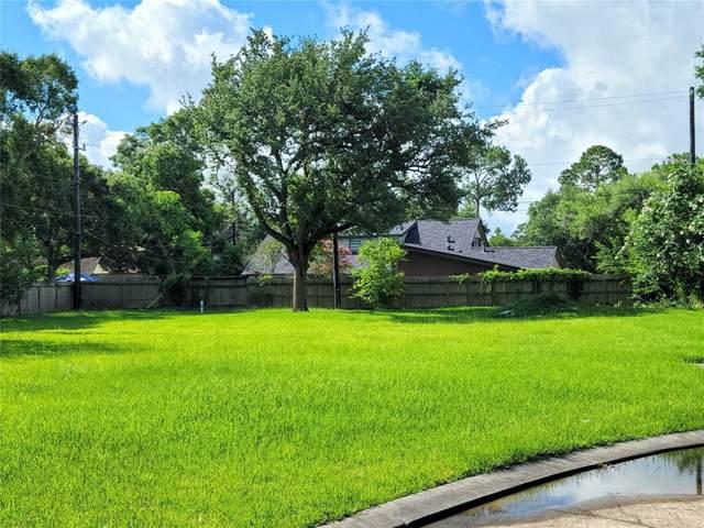 2510 Dauphin Court, Nassau Bay, TX 77058 (MLS #57344070) :: My BCS Home Real Estate Group