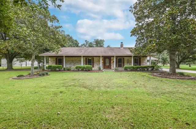 9825 Live Oak Court, Manvel, TX 77578 (MLS #57347466) :: Texas Home Shop Realty