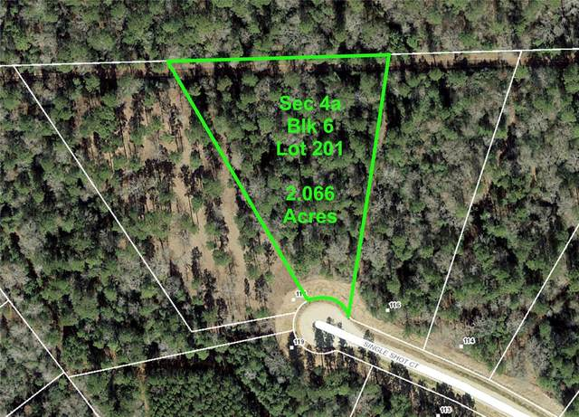 4b-6-201 Single Shot Court, Huntsville, TX 77340 (MLS #57381171) :: The Freund Group