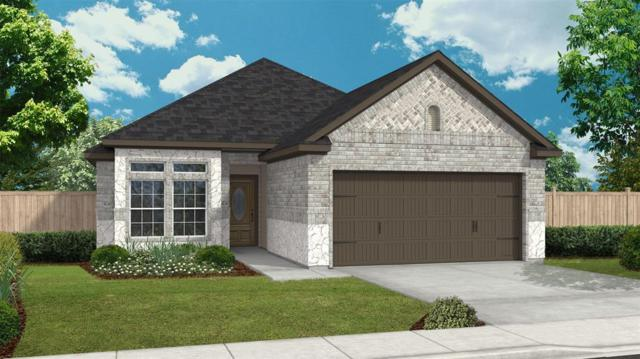 16910 Audrey Arbor Way, Richmond, TX 77407 (MLS #57382468) :: Team Sansone