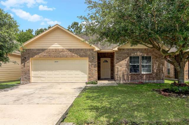 10618 Logger Pine Trail, Houston, TX 77088 (MLS #57400793) :: Ellison Real Estate Team