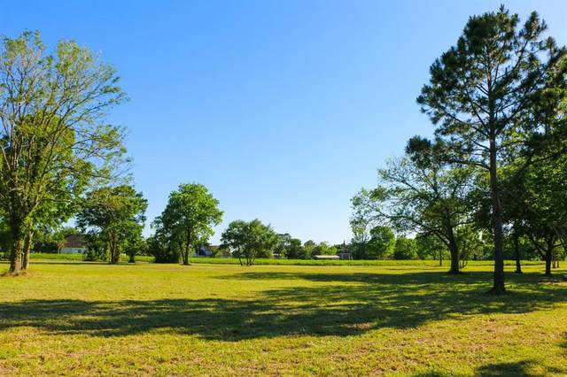0 Mandale Road, Friendswood, TX 77546 (MLS #57436932) :: The Bly Team