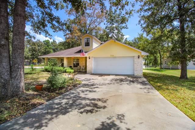359 Buffalo Court, Livingston, TX 77351 (MLS #57460630) :: Fine Living Group