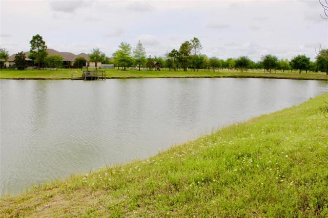 401 Pine View, Dickinson, TX 77539 (MLS #57477887) :: The SOLD by George Team