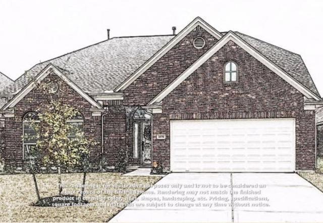 10151 North Whimbrel Circle, Conroe, TX 77385 (MLS #57494538) :: Connect Realty