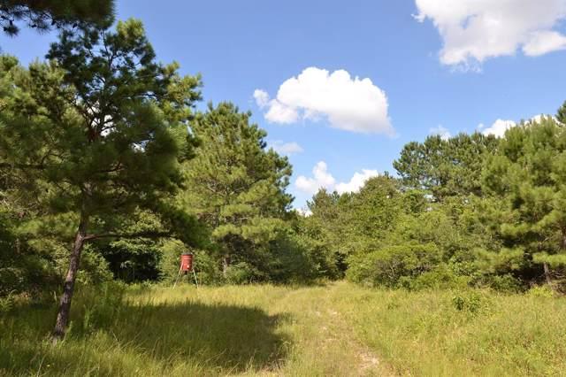 17239 Deer Run, Navasota, TX 77868 (MLS #57505965) :: Ellison Real Estate Team