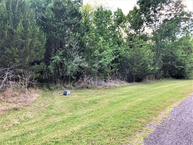 Lot 103 Elm Cove Circle, Coldspring, TX 77331 (MLS #57527256) :: Keller Williams Realty