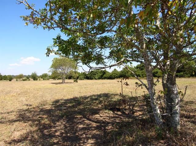 000 Nixon Lake Road, Burton, TX 77835 (MLS #57610673) :: Phyllis Foster Real Estate