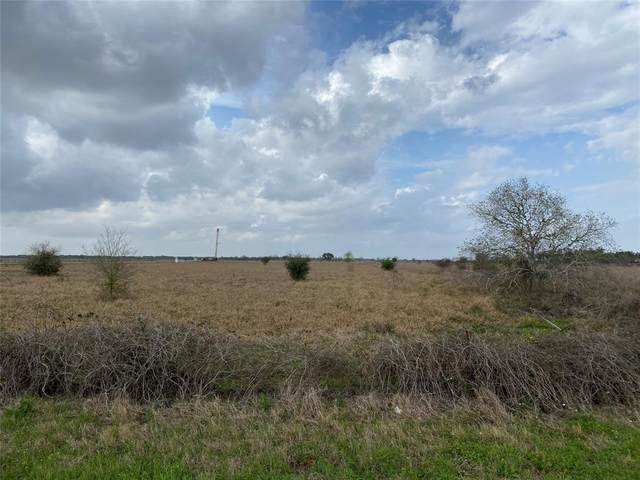 0 Fm 1300, El Campo, TX 77437 (MLS #57632160) :: The Sansone Group