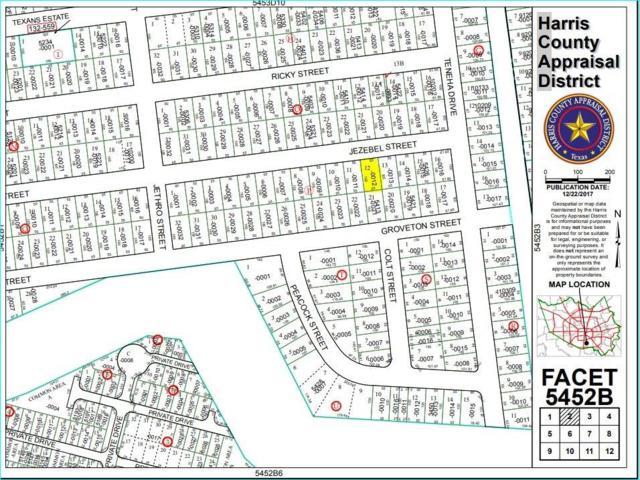 0 Jezebel St, Houston, TX 77033 (MLS #5763815) :: Texas Home Shop Realty