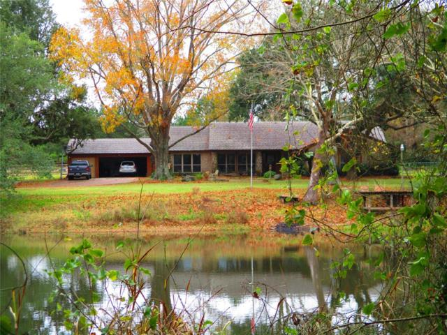 22629 Park Road, Tomball, TX 77377 (MLS #57702346) :: Magnolia Realty