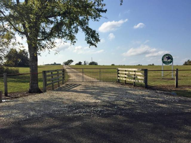 8500 Cr 309, Navasota, TX 77868 (MLS #57741106) :: Grayson-Patton Team
