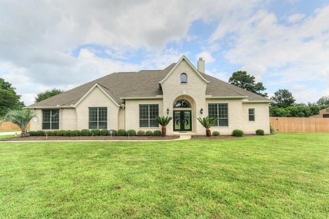 13410 Lucien Lane, Tomball, TX 77377 (MLS #57754640) :: Grayson-Patton Team