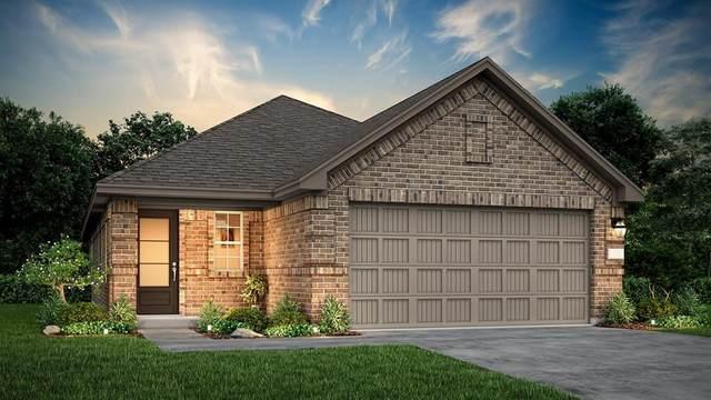 22663 Malvicino Drive, New Caney, TX 77357 (#57755859) :: ORO Realty