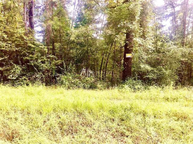 000 County Road 2552, Hardin, TX 77561 (MLS #57775658) :: My BCS Home Real Estate Group