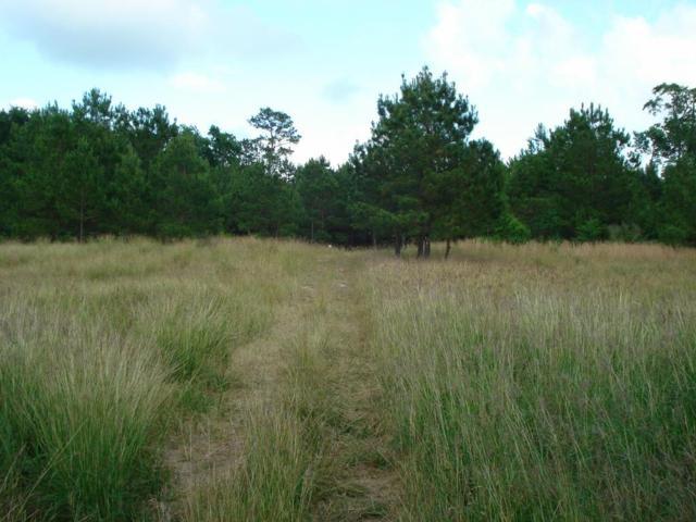 1 Pallavi Woods Drive, Kingwood, TX 77339 (MLS #57851245) :: Giorgi Real Estate Group