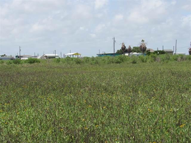 14408 Chimaera Street, Sargent, TX 77414 (MLS #57914682) :: My BCS Home Real Estate Group