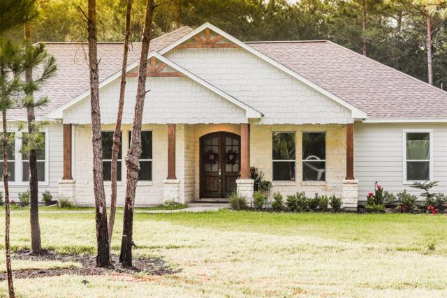 29800 NE Roan Lane NE, Waller, TX 77484 (MLS #57982196) :: Grayson-Patton Team