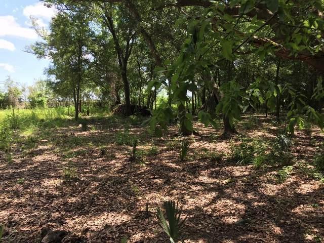 TBD Bayou Drive County Road 848, Danbury, TX 77534 (MLS #58050962) :: Green Residential
