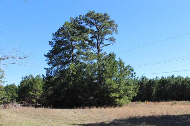 21+ Ac Pearson Road, Montgomery, TX 77356 (MLS #58077038) :: Ellison Real Estate Team