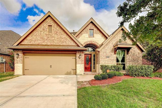 2513 Mountain Sage Drive, Pearland, TX 77584 (MLS #58223828) :: Christy Buck Team