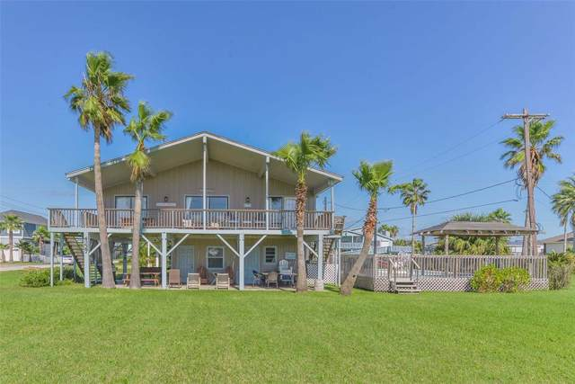 4227 Ector Drive, Galveston, TX 77554 (MLS #58245552) :: Connect Realty