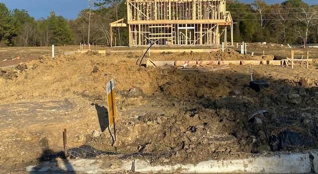 16938 Lagos Lane, Crosby, TX 77532 (MLS #5828388) :: Ellison Real Estate Team