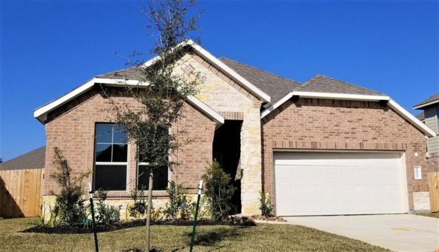 14350 Whitetop Peak, Conroe, TX 77384 (MLS #58356993) :: Fairwater Westmont Real Estate