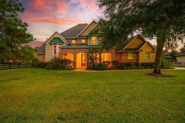 28003 Willowgreen Street, Katy, TX 77494 (MLS #58364932) :: Caskey Realty