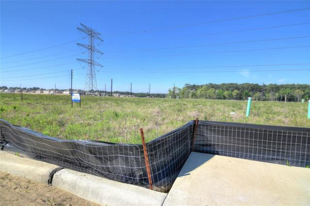248 Rolling Creek Lane, Dickinson, TX 77539 (MLS #58389770) :: Christy Buck Team