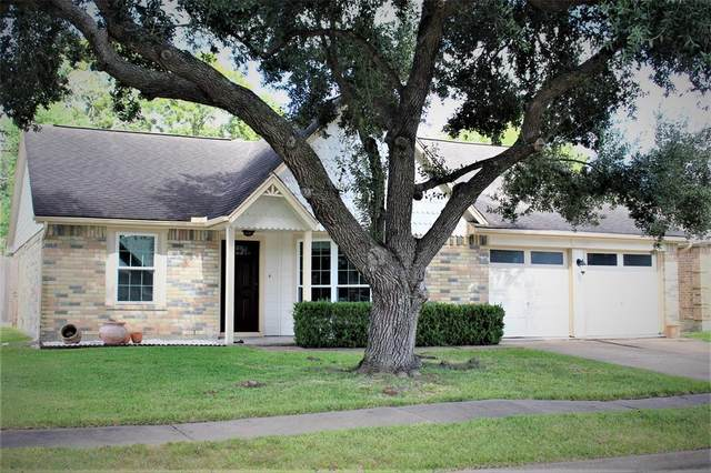 19210 Haystream Drive, Katy, TX 77449 (MLS #58410438) :: Rachel Lee Realtor